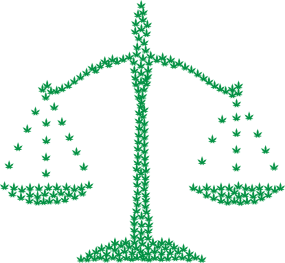 Two Big Problems with Cannabis Legalization in Illinois Marijuana-2754249_1280